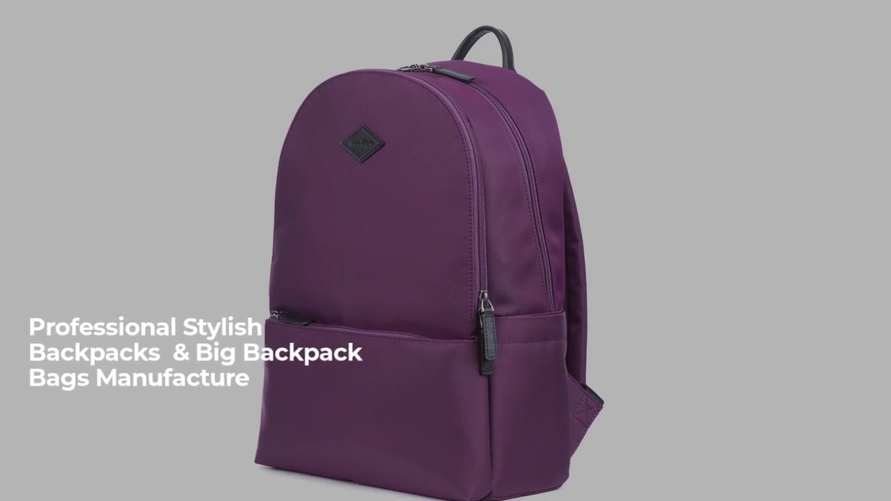 China Backpack Nylon fabric large capacity with zipper closure manufacturers-