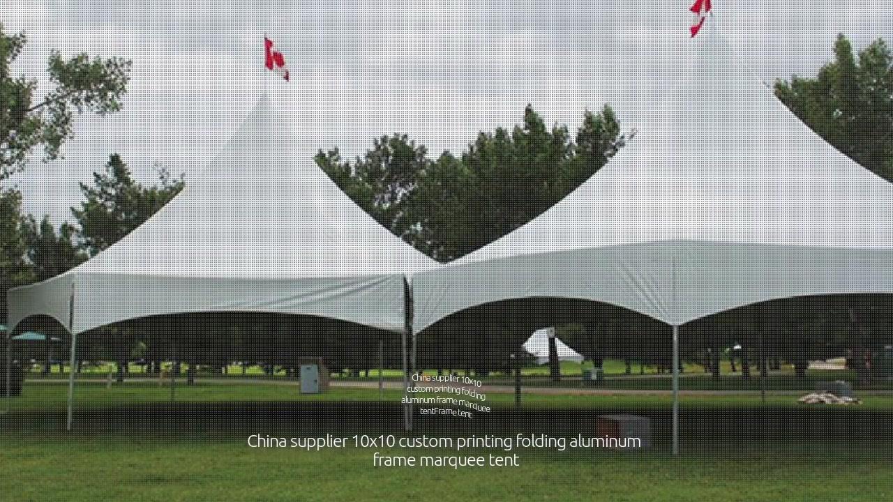 Provedor de China 10x10 tenda de marquesiña de marco de aluminio plegable para impresión