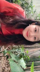 Schere Hersteller Chan Kee Pruner Gartenarbeitschere Bypass Schere Großhandel China