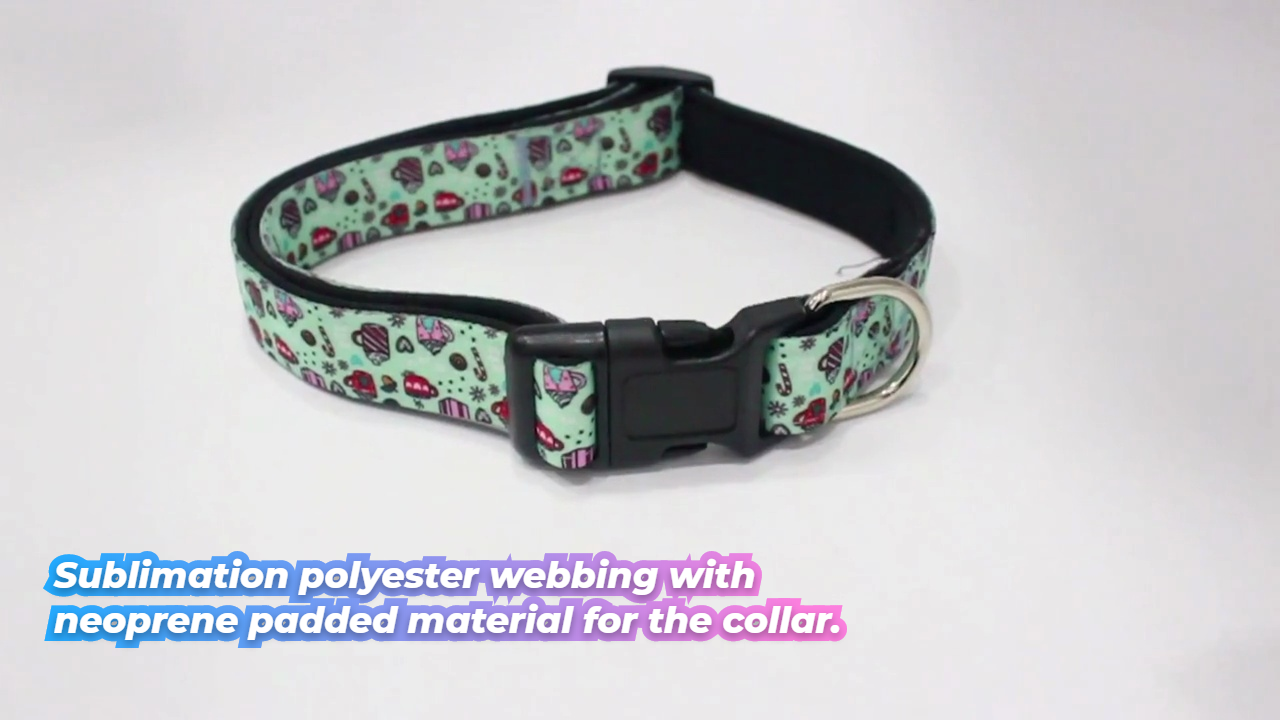 Sublimation polyester webbing with neoprene padded material for the collar.