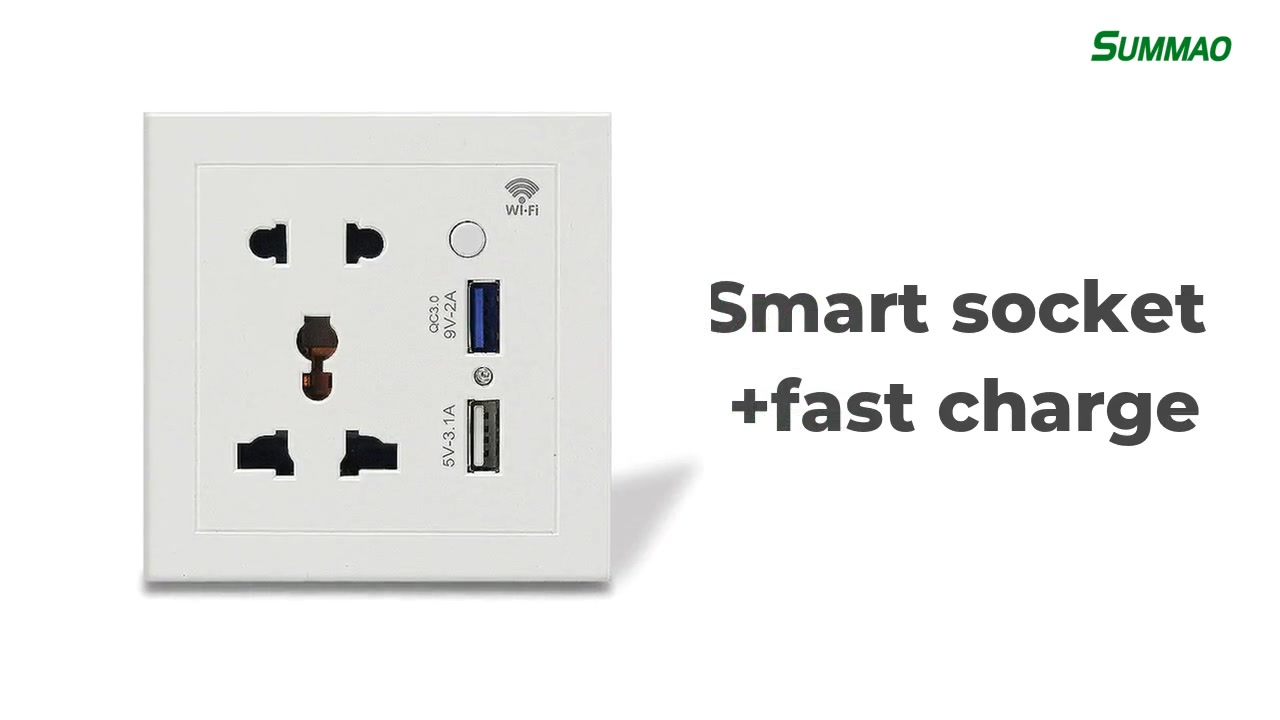 Best WiFi Version Fast Charging Smart Wall Socket Outlet Manufacturer