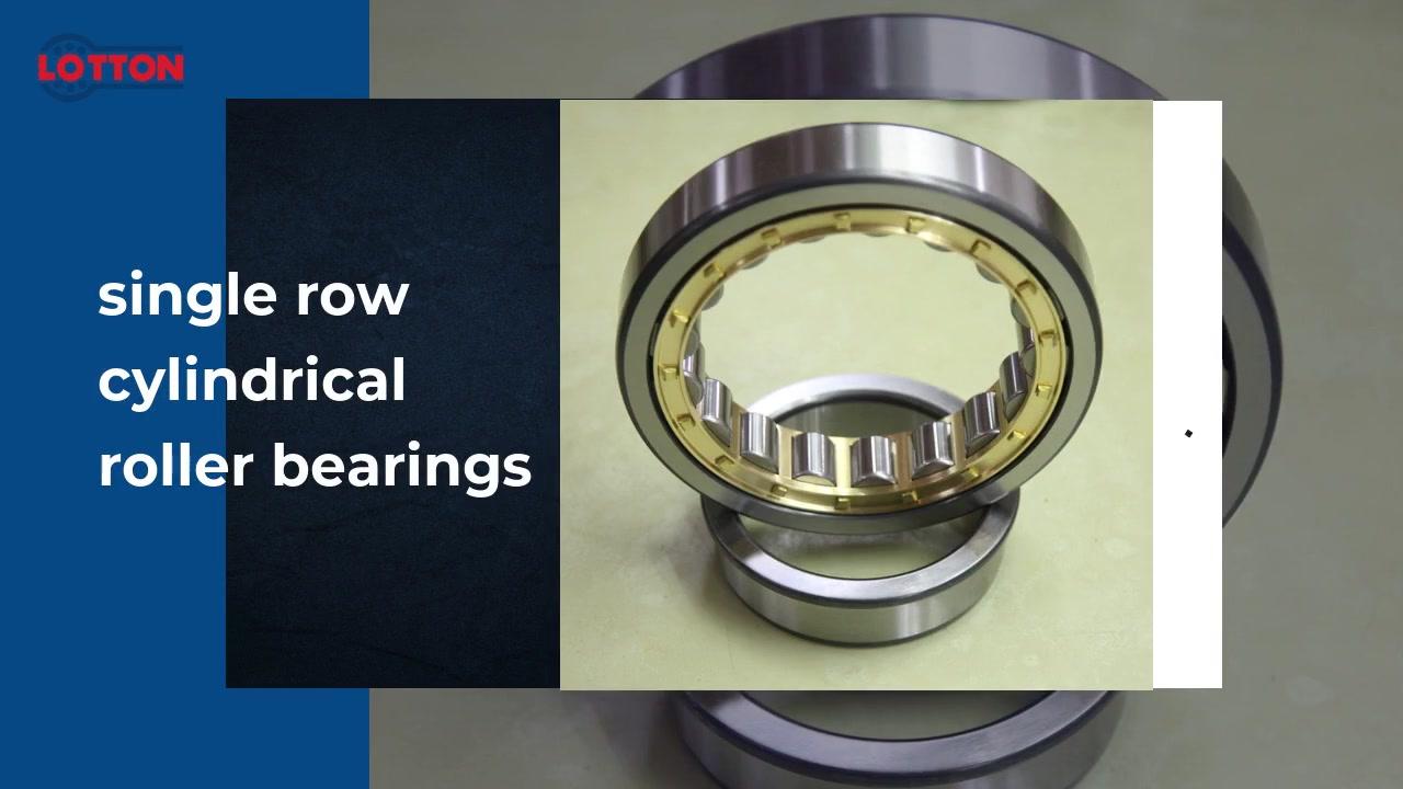 Melhor qualidade de uma única fileira de rolamentos de rolos cilíndricos de rolamento de fábrica cilíndrica | LOTTON