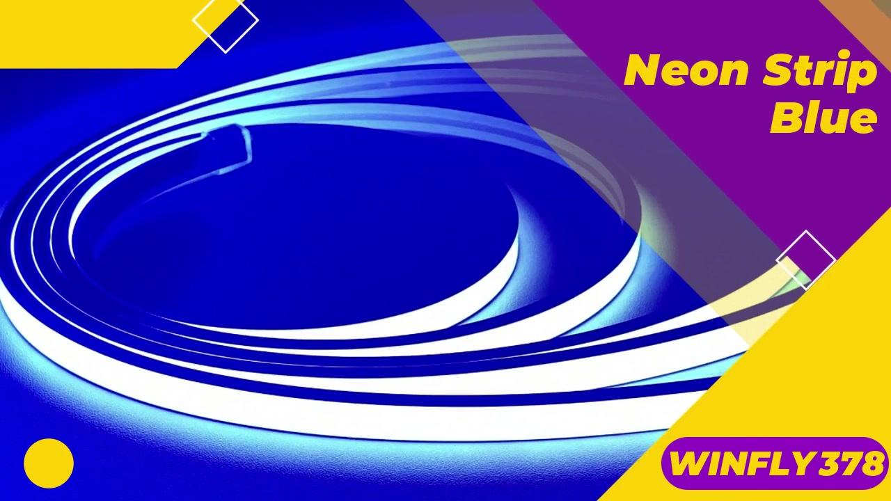 Best WINFLY378 Neon Strip 8mm Blue IP67 24V Supplier