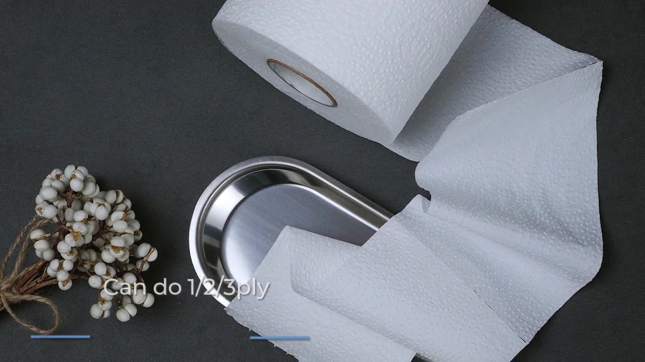 Dot Embossing Toilet Tissue Roll Paper