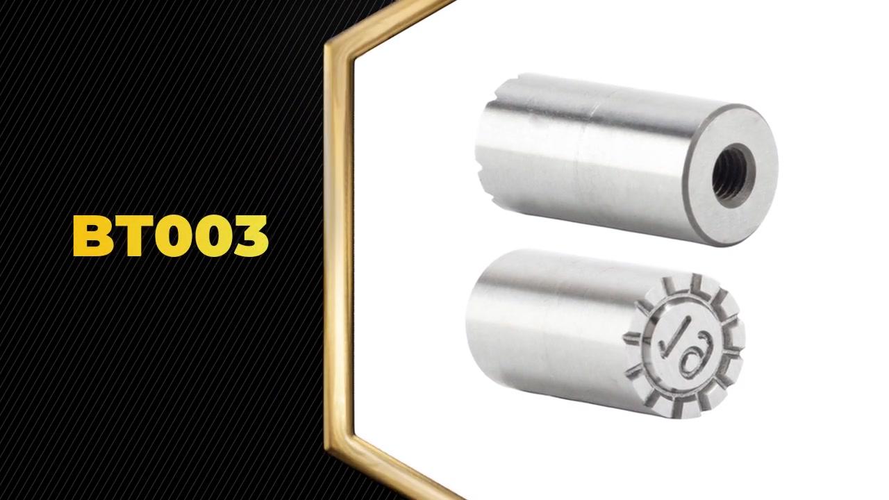 전문 BT003 다이 캐스팅 금형 날짜 도장은 주로 사출 금형 및 압축 금형에 사용됩니다. 제조업 자