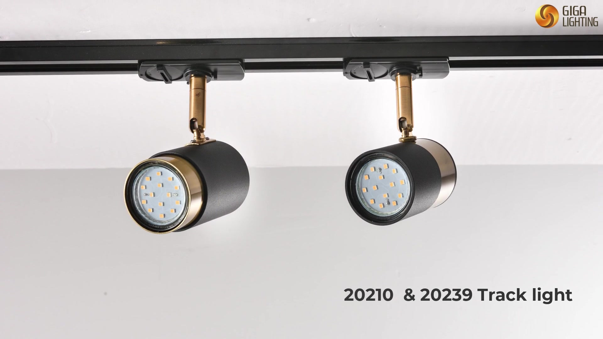 Best-selling decorative track lighting 20210 & 20239