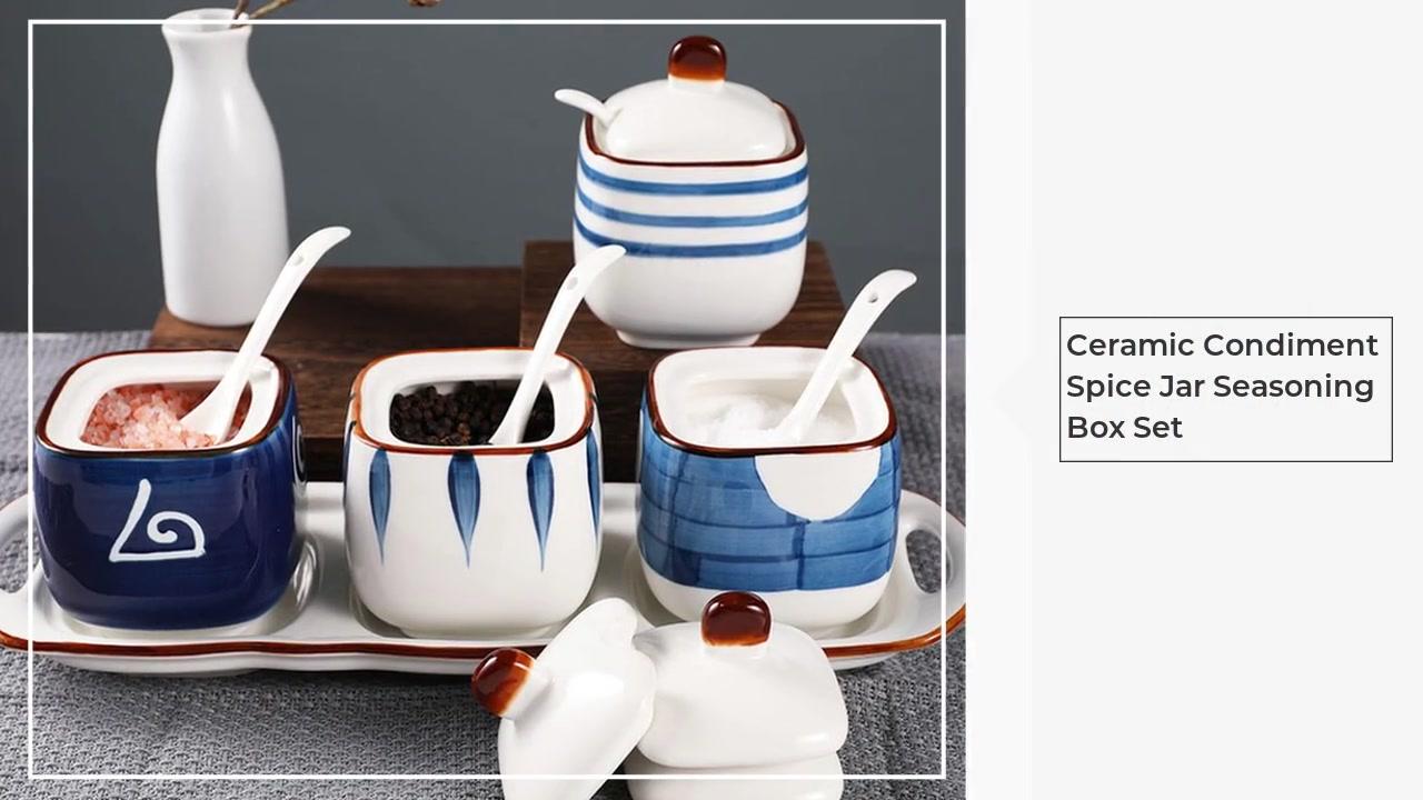 Keramik-Gewürz-Gewürz-Jar-Gewürzkastensatz