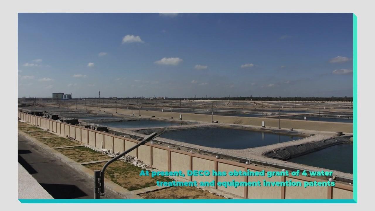 Египет вечнозеленые объединенные рыбные фермы RAS поставщик