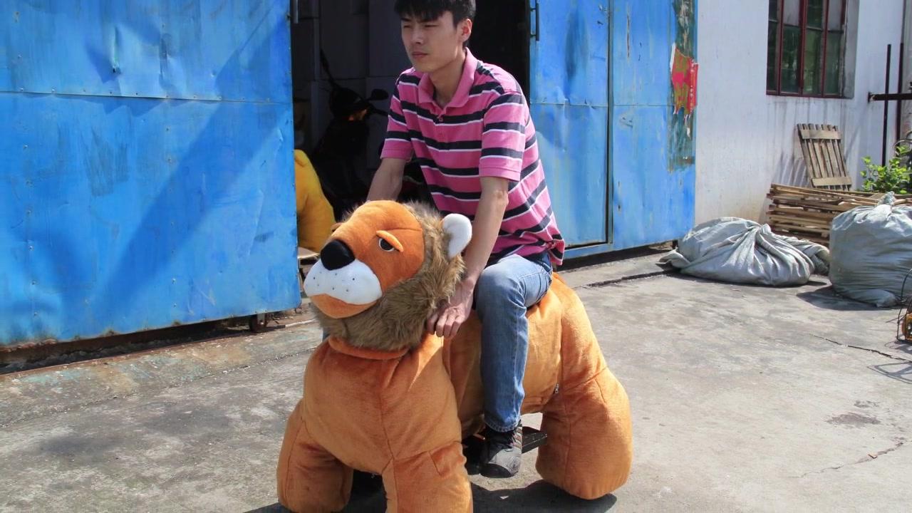 015 Lion