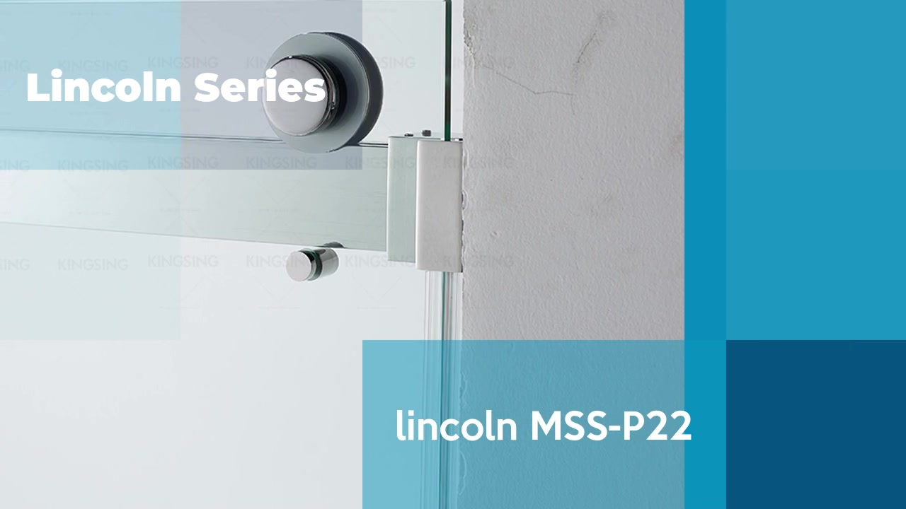 リンカーンMSS-P22