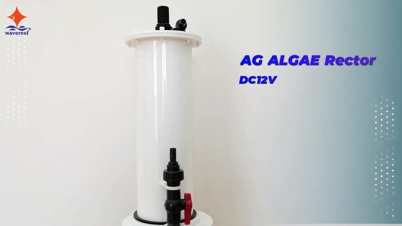 AG ALGAE Rector DC12V alat penyaring air yang menggunakan lampu LED tanam untuk menumbuhkan alga