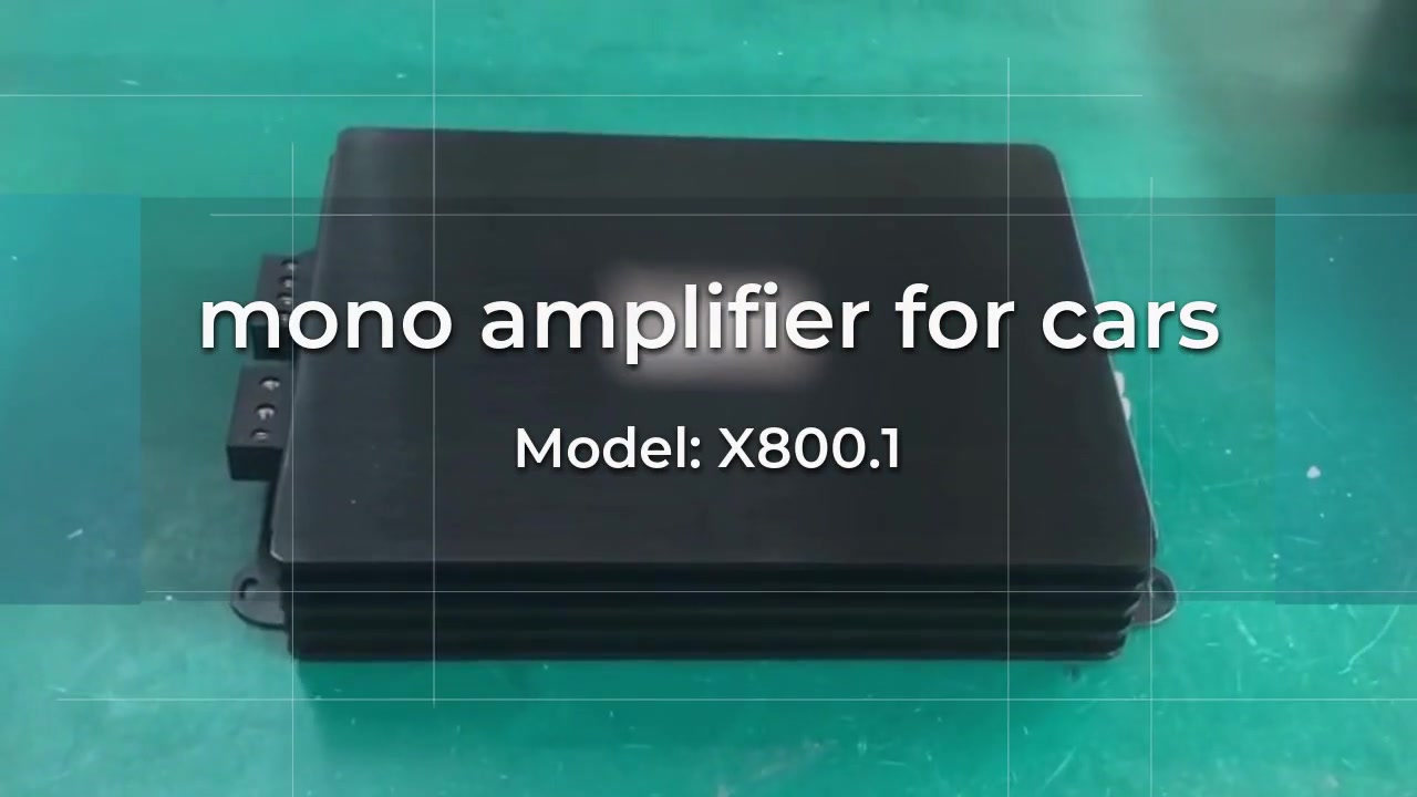 Customized mono car amplifier for sale manufacturers From China